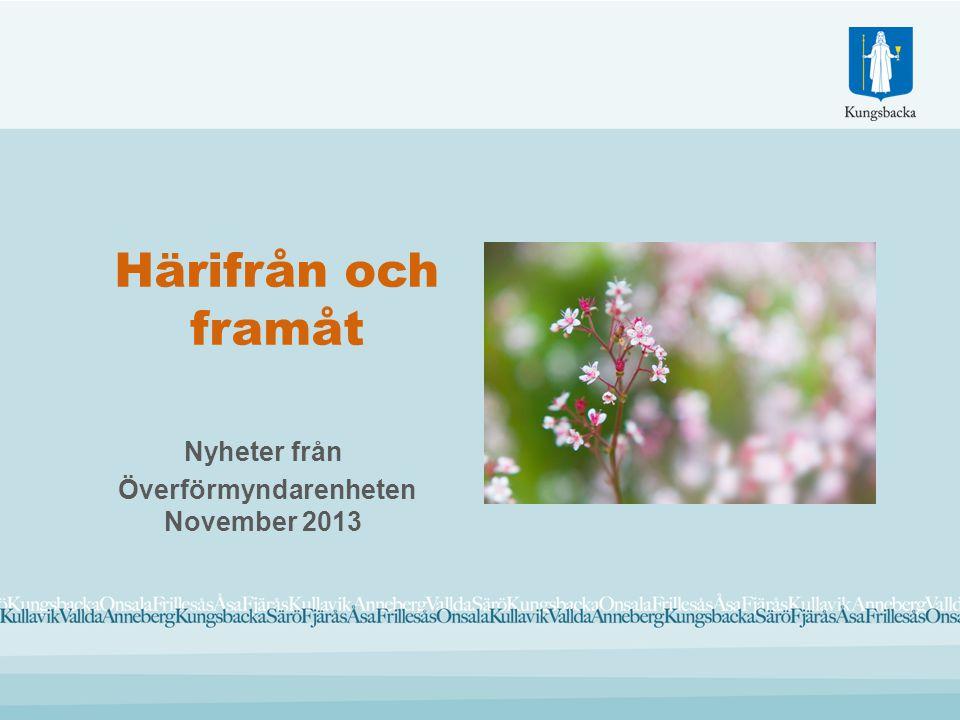 Härifrån och framåt Nyheter från Överförmyndarenheten November 2013