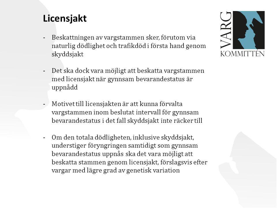Licensjakt -Beskattningen av vargstammen sker, förutom via naturlig dödlighet och trafikdöd i första hand genom skyddsjakt -Det ska dock vara möjligt att beskatta vargstammen med licensjakt när gynnsam bevarandestatus är uppnådd -Motivet till licensjakten är att kunna förvalta vargstammen inom beslutat intervall för gynnsam bevarandestatus i det fall skyddsjakt inte räcker till -Om den totala dödligheten, inklusive skyddsjakt, understiger föryngringen samtidigt som gynnsam bevarandestatus uppnås ska det vara möjligt att beskatta stammen genom licensjakt, förslagsvis efter vargar med lägre grad av genetisk variation