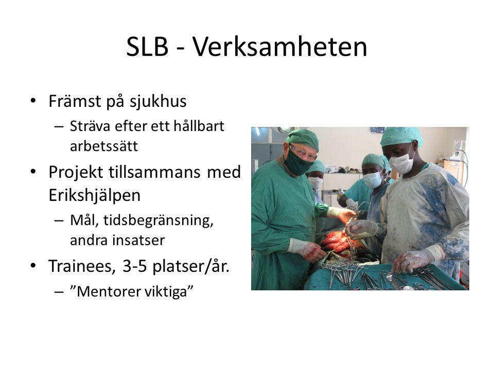 SLB - Verksamheten • Främst på sjukhus – Sträva efter ett hållbart arbetssätt • Projekt tillsammans med Erikshjälpen – Mål, tidsbegränsning, andra ins