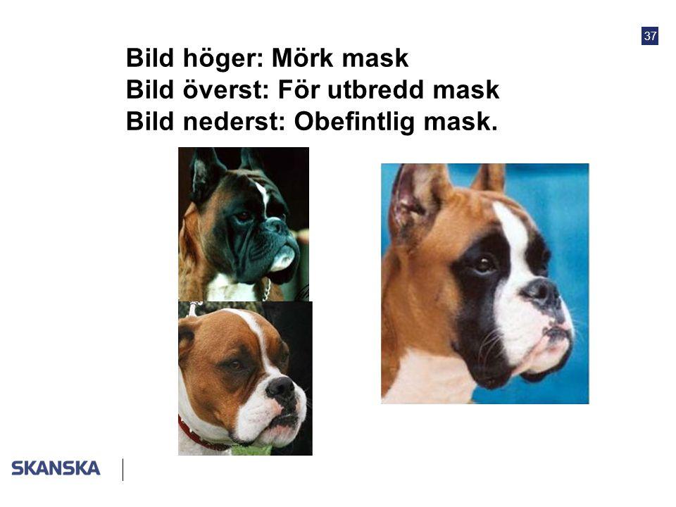 37 Bild höger: Mörk mask Bild överst: För utbredd mask Bild nederst: Obefintlig mask.