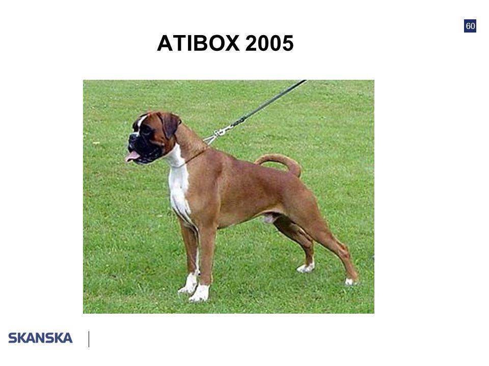 60 ATIBOX 2005