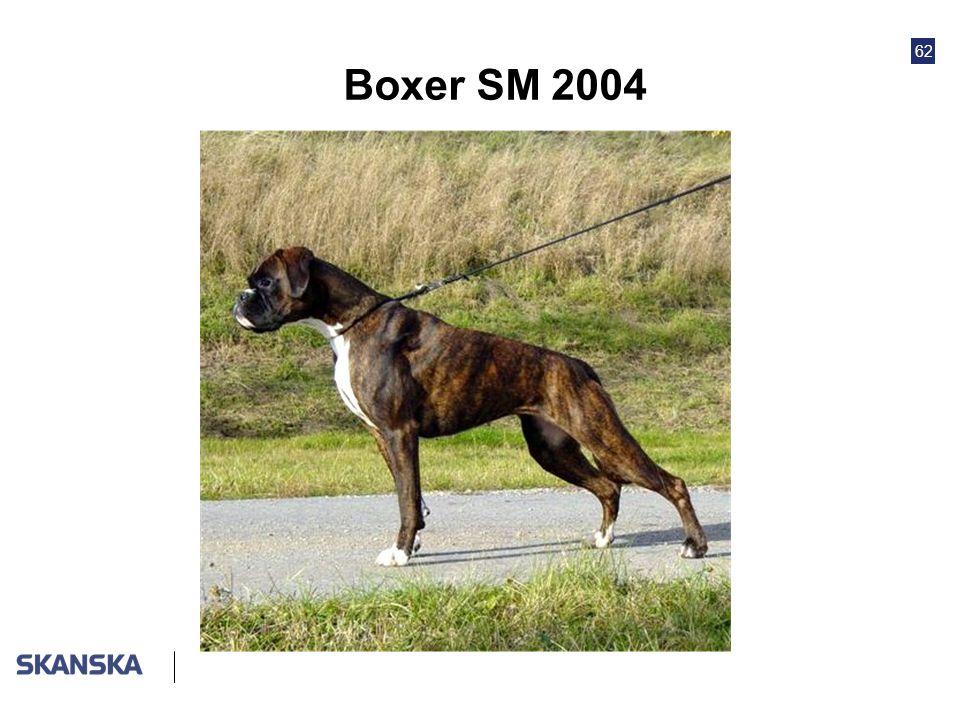 62 Boxer SM 2004