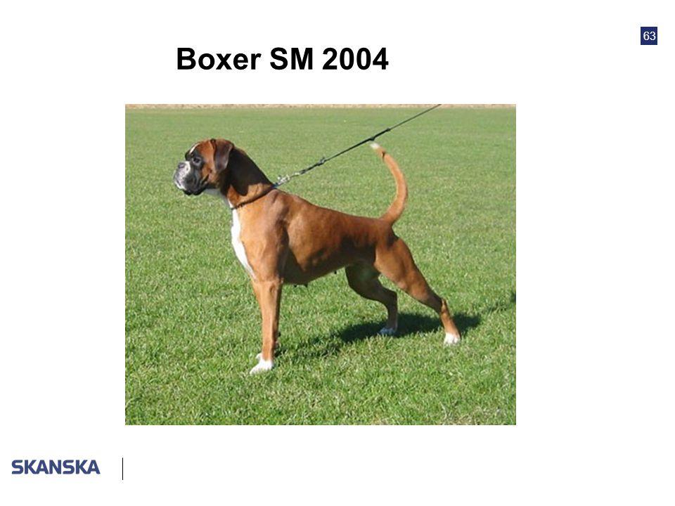 63 Boxer SM 2004