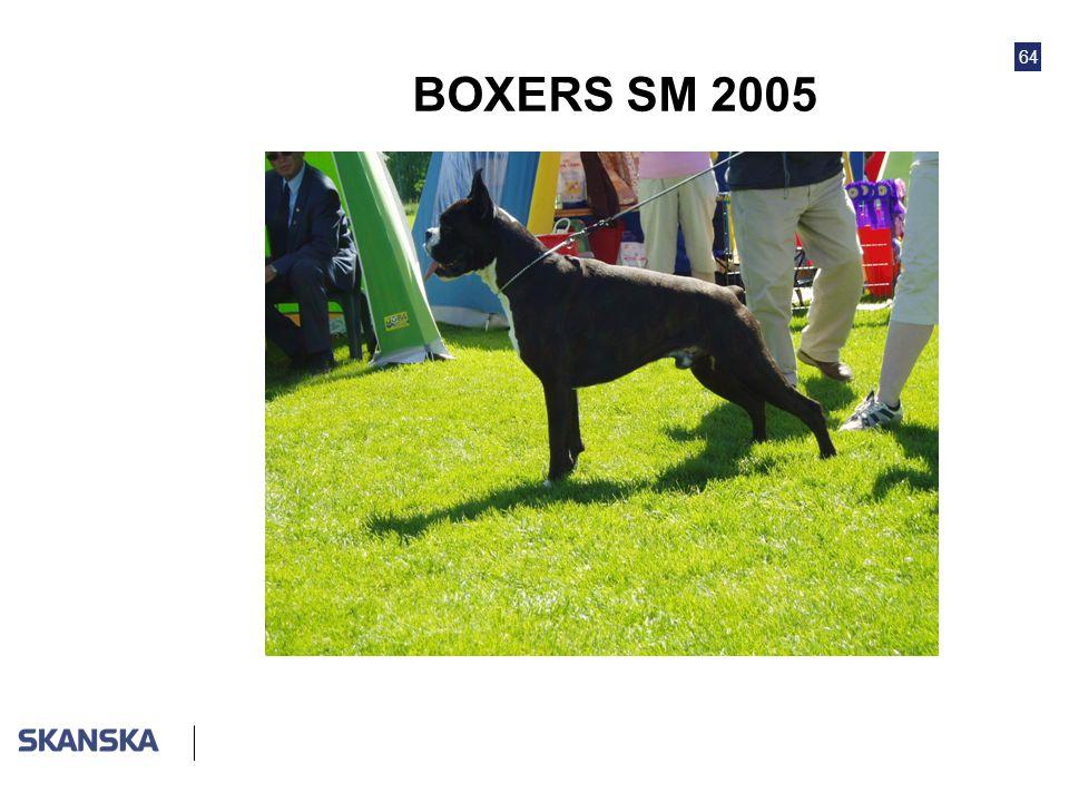 64 BOXERS SM 2005