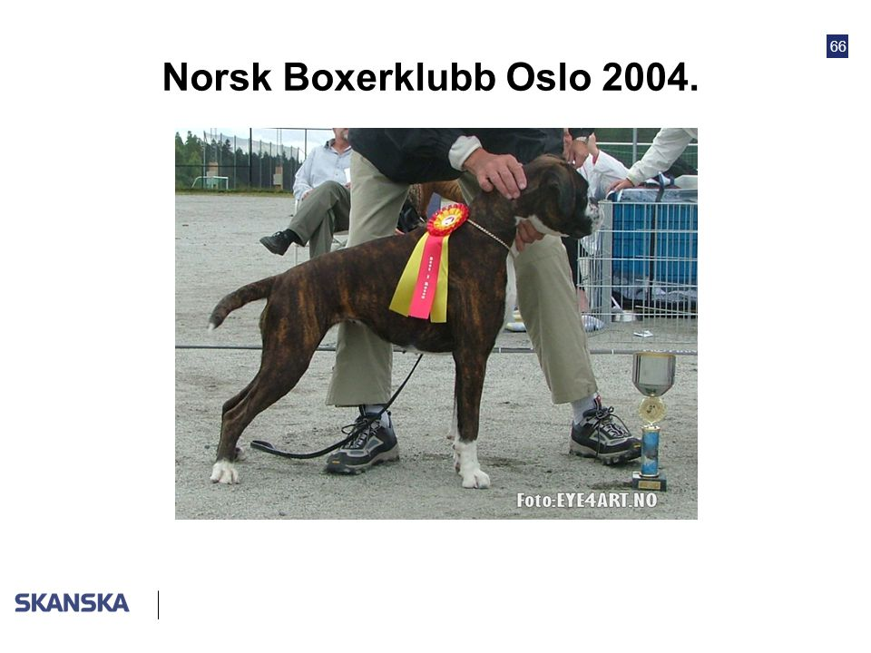 66 Norsk Boxerklubb Oslo 2004.