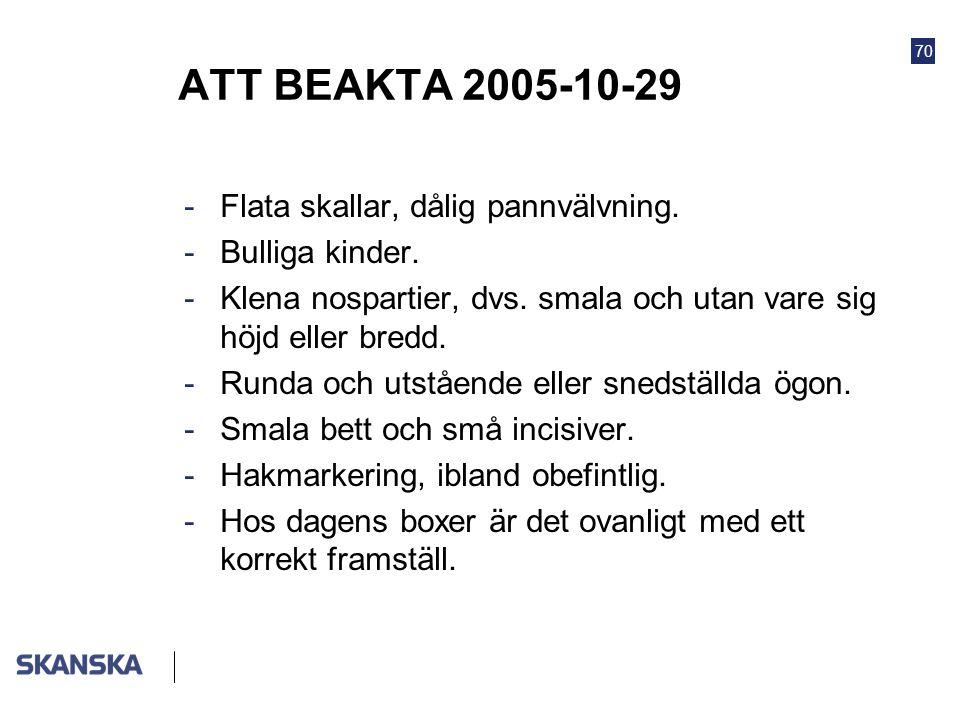 70 ATT BEAKTA 2005-10-29 -Flata skallar, dålig pannvälvning. -Bulliga kinder. -Klena nospartier, dvs. smala och utan vare sig höjd eller bredd. -Runda