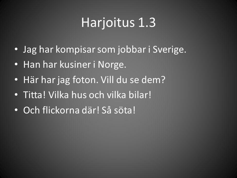Harjoitus 1.3 • Jag har kompisar som jobbar i Sverige. • Han har kusiner i Norge. • Här har jag foton. Vill du se dem? • Titta! Vilka hus och vilka bi