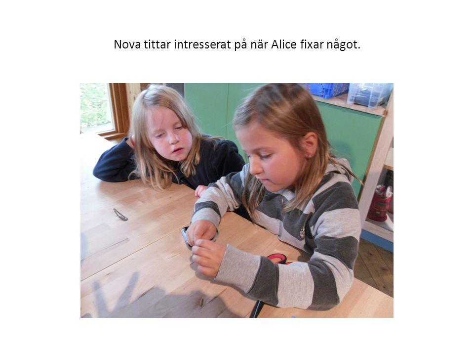 Nova tittar intresserat på när Alice fixar något.