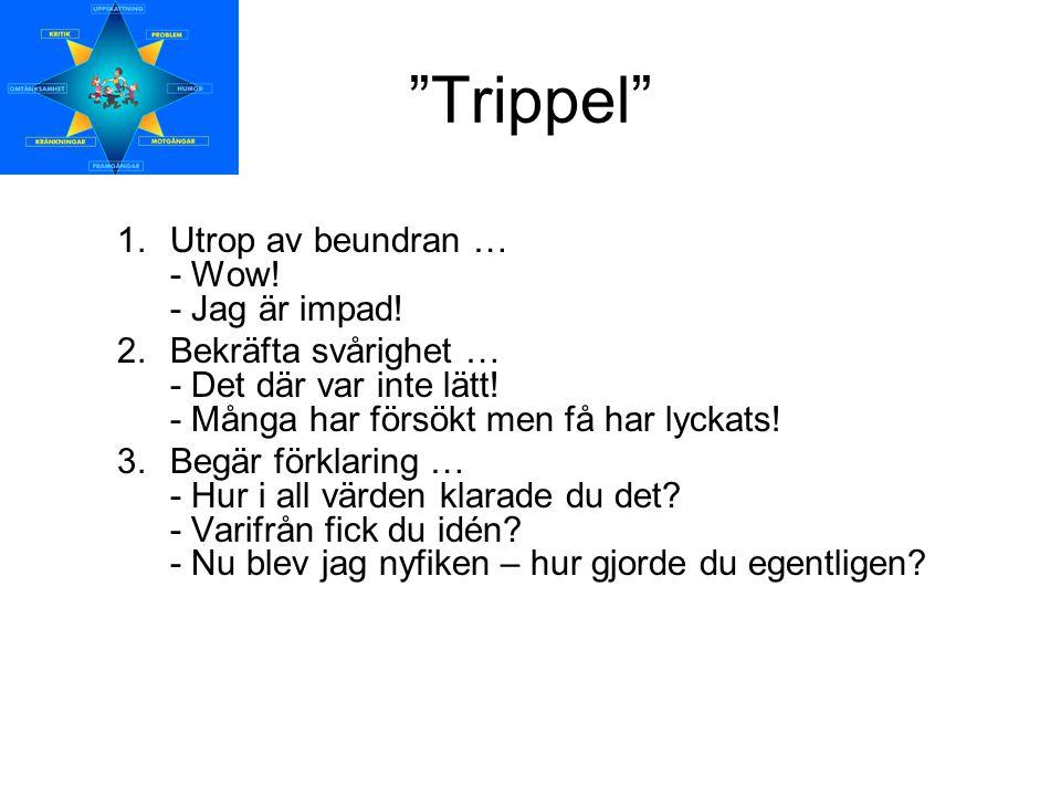 """""""Trippel"""" 1.Utrop av beundran … - Wow! - Jag är impad! 2.Bekräfta svårighet … - Det där var inte lätt! - Många har försökt men få har lyckats! 3.Begär"""