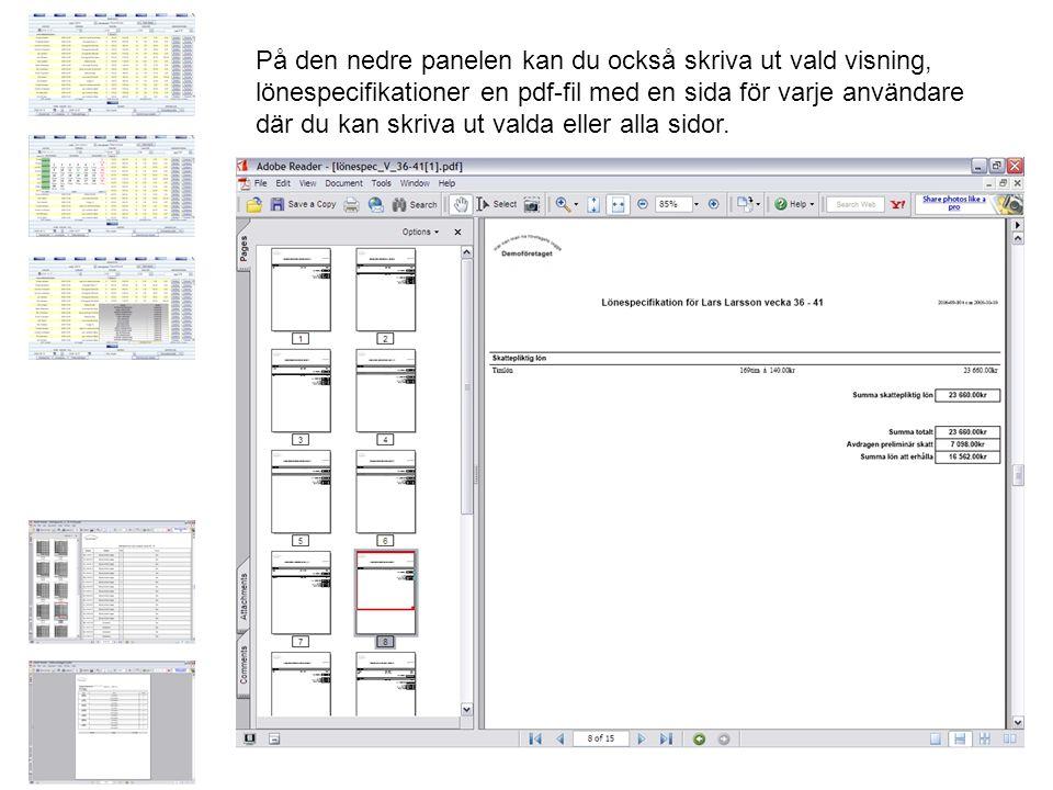 På den nedre panelen kan du också skriva ut vald visning, lönespecifikationer en pdf-fil med en sida för varje användare där du kan skriva ut valda eller alla sidor.