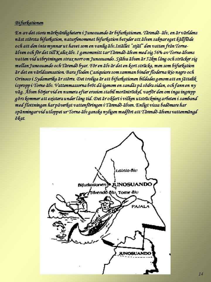 14 Bifurkationen En av det stora märkvärdighetern i Junosuando är bifurkationen. Tärendö- älv, en är världens näst största bifurkation, naturfenomenet