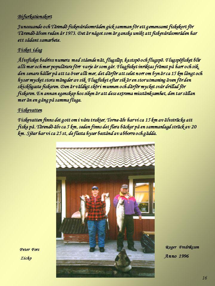 16 Bifurkationskort Junosuando och Tärendö fiskevårdsområden gick samman för ett gemensamt fiskekort för Tärendö-älven redan år 1973. Det är något som