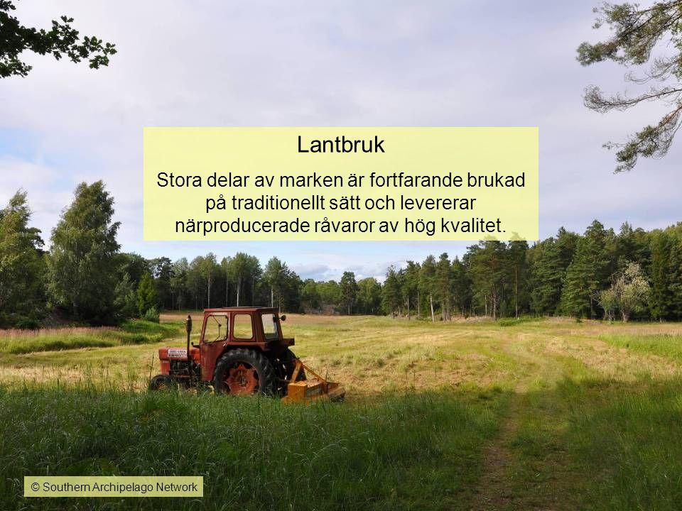Lantbruk Stora delar av marken är fortfarande brukad på traditionellt sätt och levererar närproducerade råvaror av hög kvalitet. © Southern Archipelag