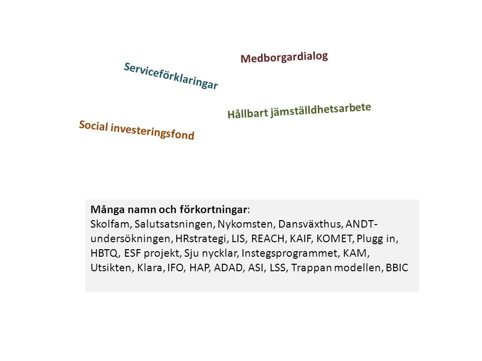 Hållbart jämställdhetsarbete Serviceförklaringar Medborgardialog Många namn och förkortningar: Skolfam, Salutsatsningen, Nykomsten, Dansväxthus, ANDT- undersökningen, HRstrategi, LIS, REACH, KAIF, KOMET, Plugg in, HBTQ, ESF projekt, Sju nycklar, Instegsprogrammet, KAM, Utsikten, Klara, IFO, HAP, ADAD, ASI, LSS, Trappan modellen, BBIC Social investeringsfond