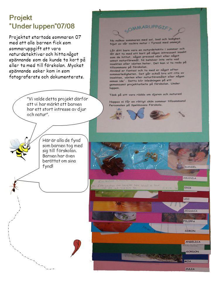 """Projekt """"Under luppen""""07/08 Projektet startade sommaren 07 med att alla barnen fick som sommaruppgift att vara naturdetektiver och hitta något spännan"""