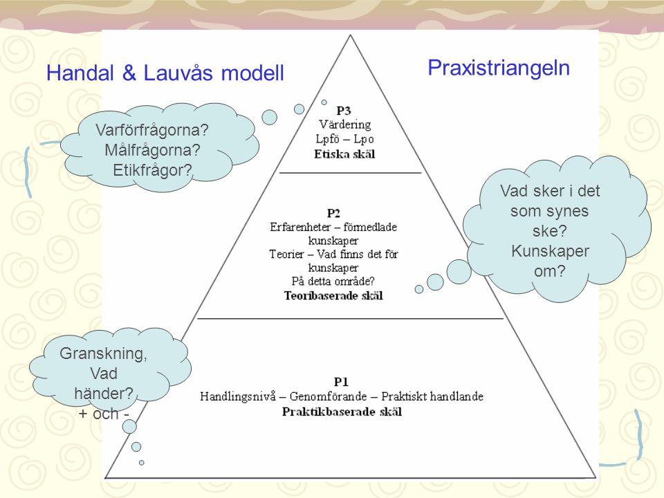 Handal & Lauvås modell Praxistriangeln Granskning, Vad händer? + och - Vad sker i det som synes ske? Kunskaper om? Varförfrågorna? Målfrågorna? Etikfr
