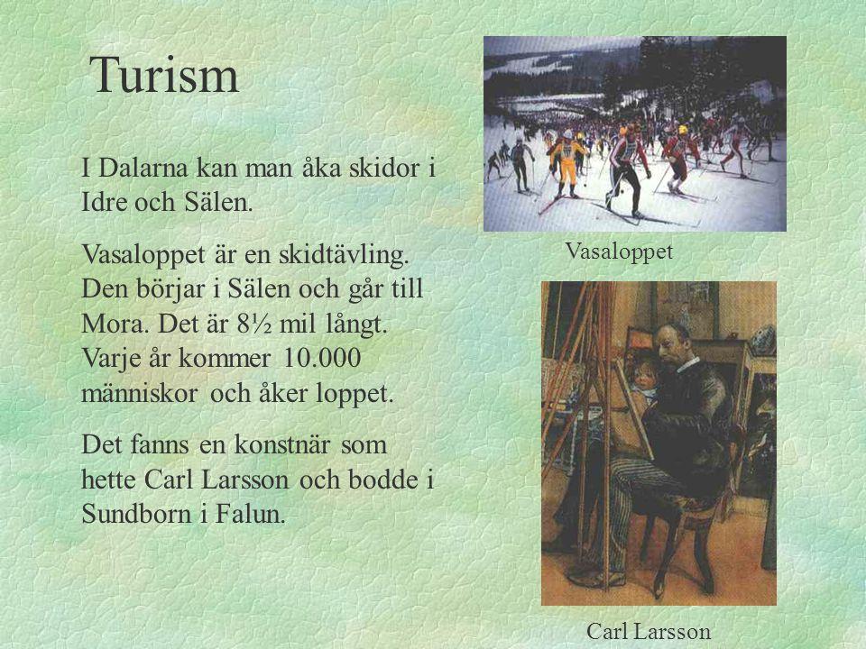 I Dalarna kan man åka skidor i Idre och Sälen. Vasaloppet är en skidtävling. Den börjar i Sälen och går till Mora. Det är 8½ mil långt. Varje år komme
