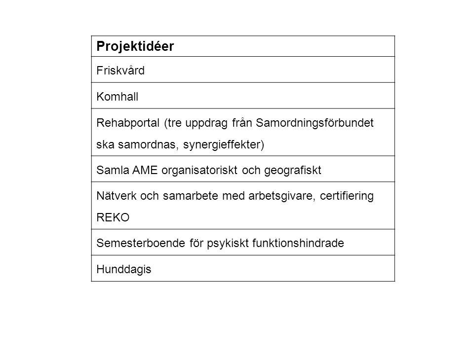 Projektidéer Friskvård Komhall Rehabportal (tre uppdrag från Samordningsförbundet ska samordnas, synergieffekter) Samla AME organisatoriskt och geogra