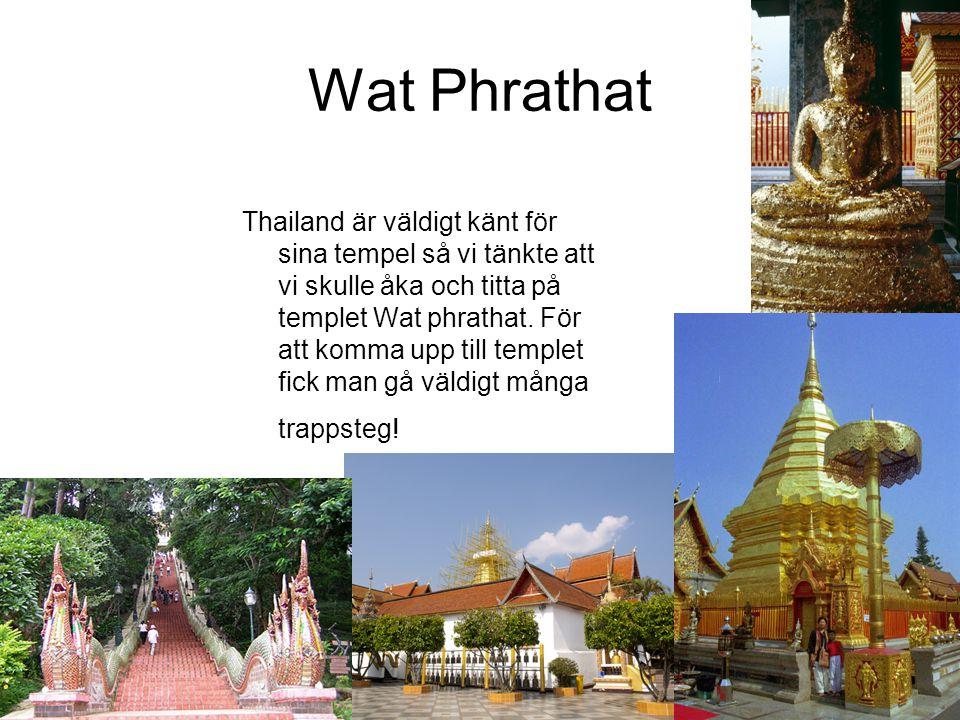 Wat Phrathat Thailand är väldigt känt för sina tempel så vi tänkte att vi skulle åka och titta på templet Wat phrathat. För att komma upp till templet