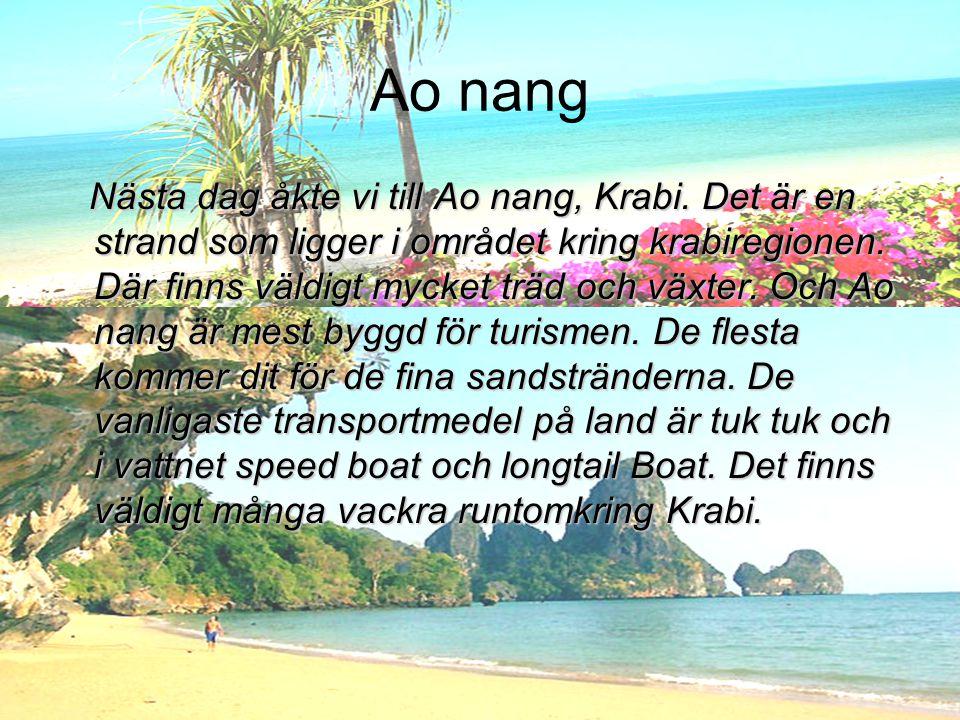 Ao nang Nästa dag åkte vi till Ao nang, Krabi. Det är en strand som ligger i området kring krabiregionen. Där finns väldigt mycket träd och växter. Oc