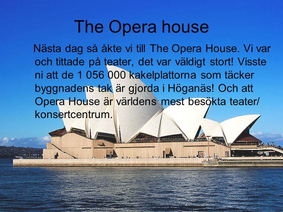 The Opera house Nästa dag så åkte vi till The Opera House. Vi var och tittade på teater, det var väldigt stort! Visste ni att de 1 056 000 kakelplatto