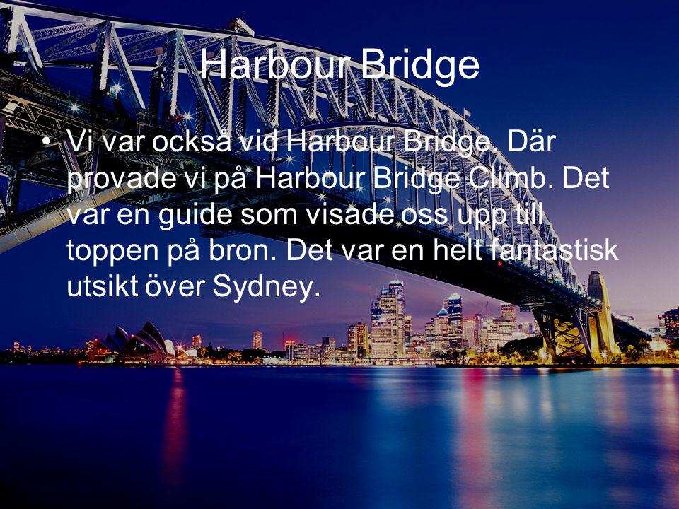 Harbour Bridge •Vi var också vid Harbour Bridge. Där provade vi på Harbour Bridge Climb. Det var en guide som visade oss upp till toppen på bron. Det
