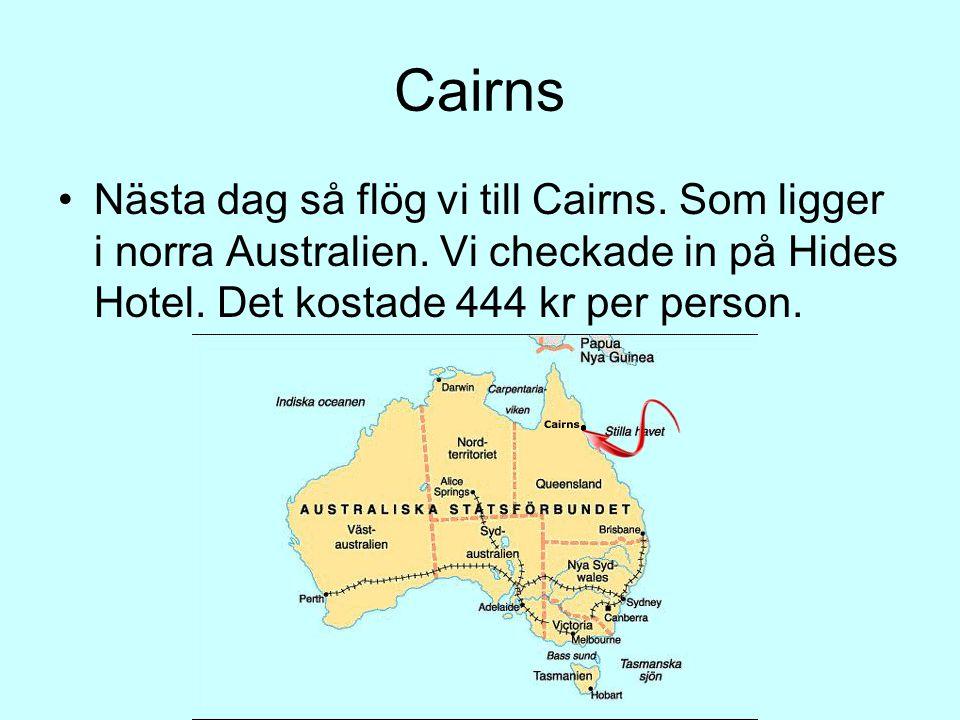 Cairns •Nästa dag så flög vi till Cairns. Som ligger i norra Australien. Vi checkade in på Hides Hotel. Det kostade 444 kr per person.