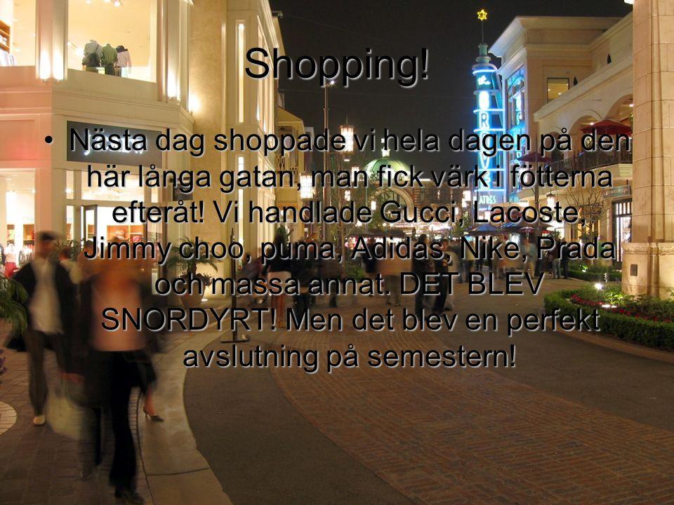 Shopping! •Nästa dag shoppade vi hela dagen på den här långa gatan, man fick värk i fötterna efteråt! Vi handlade Gucci, Lacoste, Jimmy choo, puma, Ad