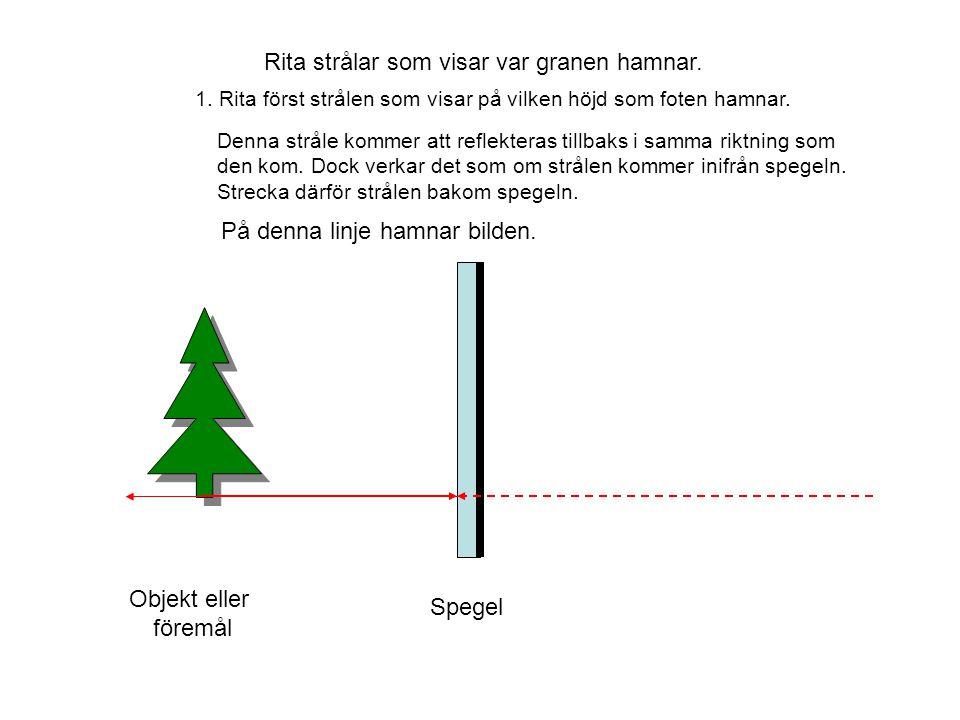 Objekt eller föremål Spegel Rita strålar som visar var granen hamnar. 1. Rita först strålen som visar på vilken höjd som foten hamnar. Denna stråle ko