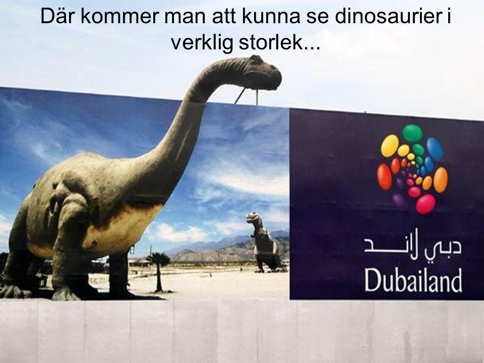 Där kommer man att kunna se dinosaurier i verklig storlek...