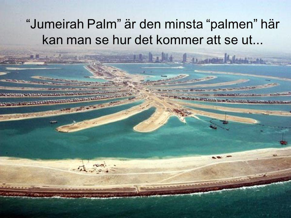 Jumeirah Palm är den minsta palmen här kan man se hur det kommer att se ut...