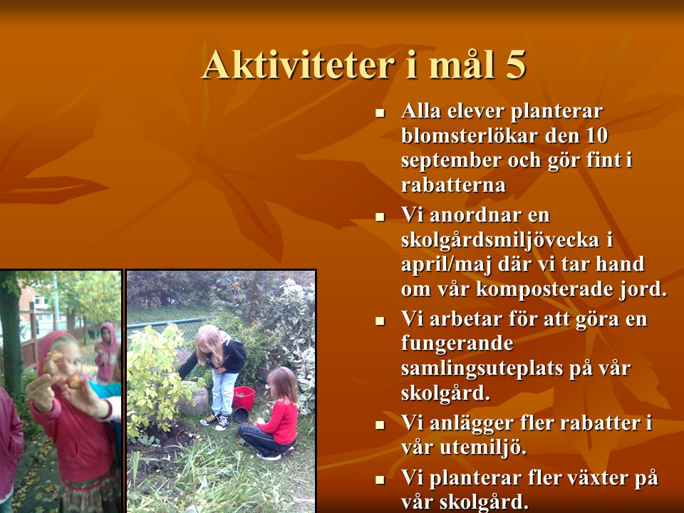 Aktiviteter i mål 5  Alla elever planterar blomsterlökar den 10 september och gör fint i rabatterna  Vi anordnar en skolgårdsmiljövecka i april/maj