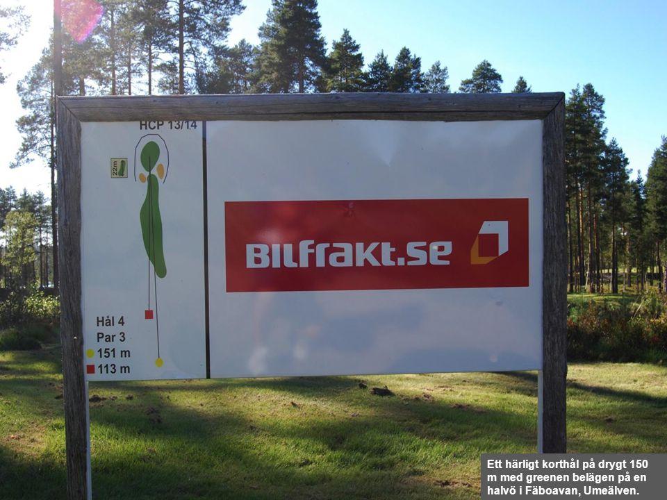 Ett härligt korthål på drygt 150 m med greenen belägen på en halvö i Fäboavan, Umeälven.