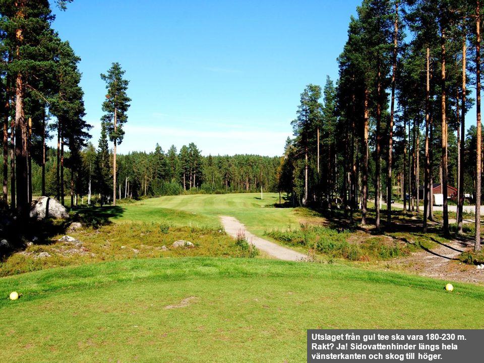 Utslaget från gul tee ska vara 180-230 m. Rakt? Ja! Sidovattenhinder längs hela vänsterkanten och skog till höger.