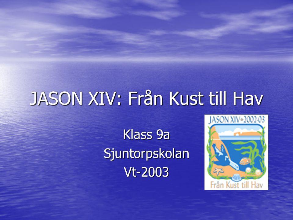 JASON XIV: Från Kust till Hav Klass 9a SjuntorpskolanVt-2003