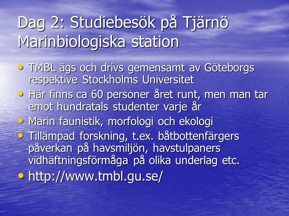 Dag 2: Studiebesök på Tjärnö Marinbiologiska station • TMBL ägs och drivs gemensamt av Göteborgs respektive Stockholms Universitet • Här finns ca 60 p