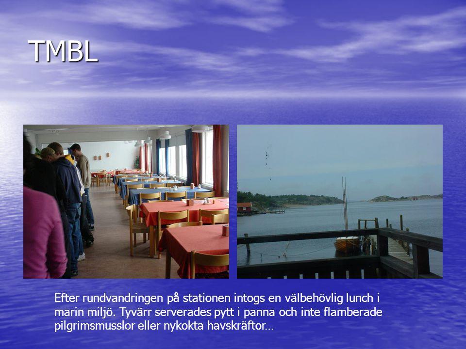 TMBL Efter rundvandringen på stationen intogs en välbehövlig lunch i marin miljö. Tyvärr serverades pytt i panna och inte flamberade pilgrimsmusslor e