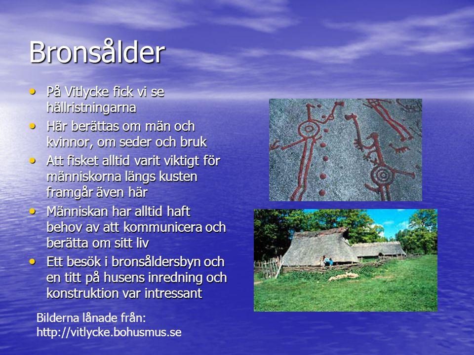 Cykeltur på Sydkoster Vill du veta mer om Kosteröarna.