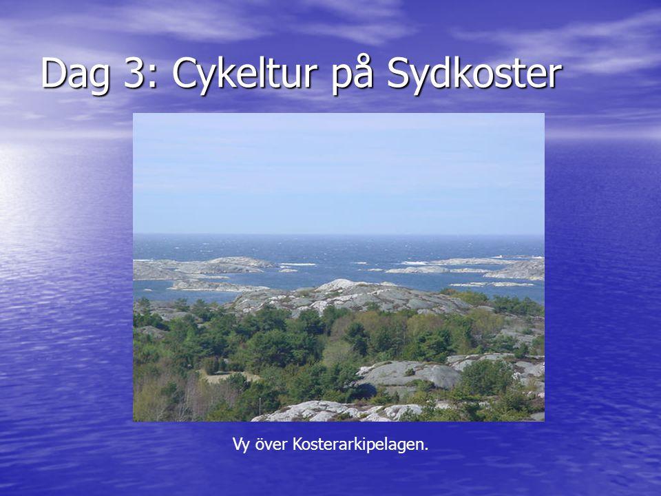 Dag 3: Cykeltur på Sydkoster Vy över Kosterarkipelagen.
