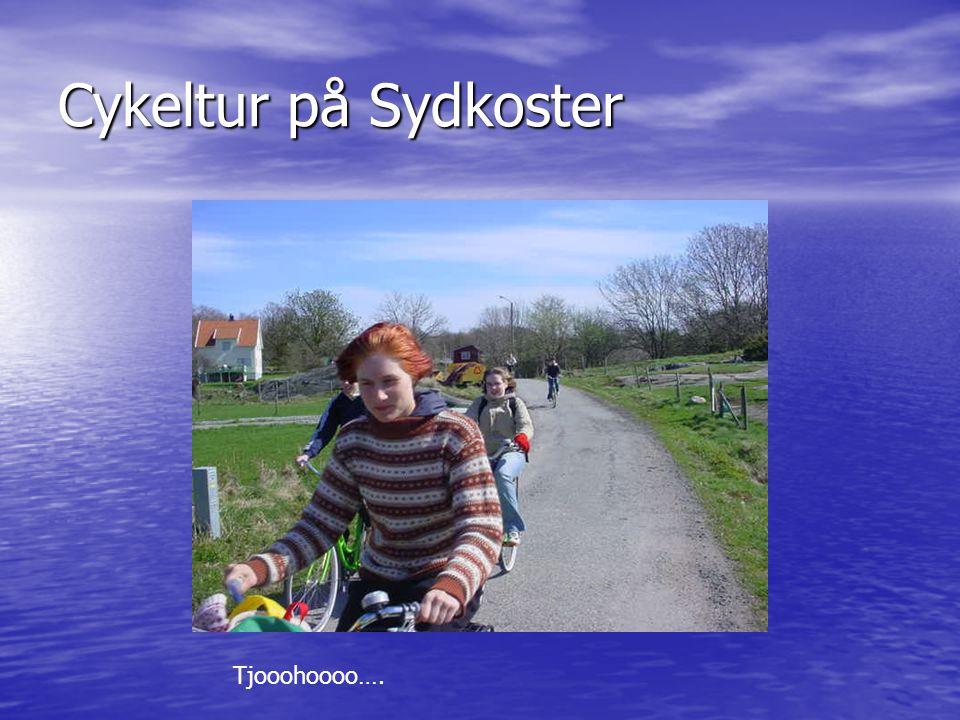 Cykeltur på Sydkoster Tjooohoooo….