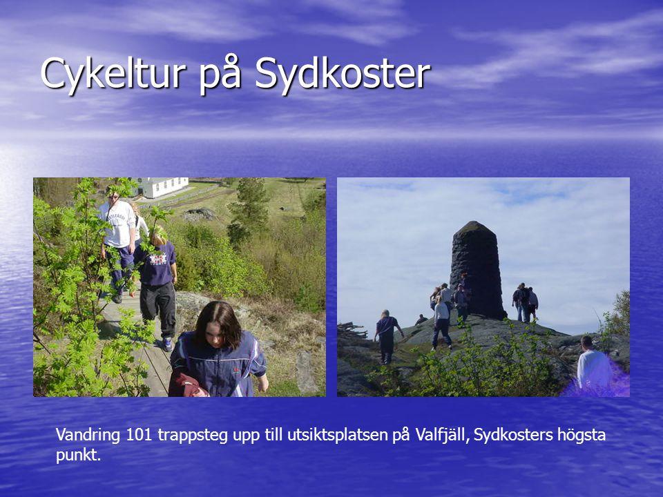 Cykeltur på Sydkoster Vandring 101 trappsteg upp till utsiktsplatsen på Valfjäll, Sydkosters högsta punkt.
