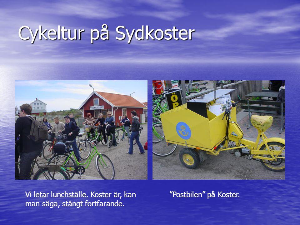 """Cykeltur på Sydkoster Vi letar lunchställe. Koster är, kan man säga, stängt fortfarande. """"Postbilen"""" på Koster."""