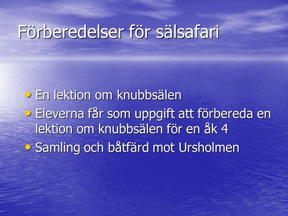 Ursholmen Gåva till stiftelsen Ursholmen.Västkustens militärkommando 1982.