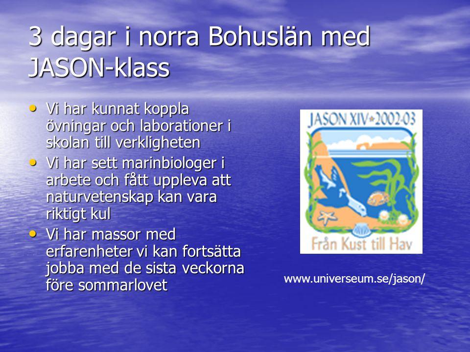3 dagar i norra Bohuslän med JASON-klass • Vi har kunnat koppla övningar och laborationer i skolan till verkligheten • Vi har sett marinbiologer i arb