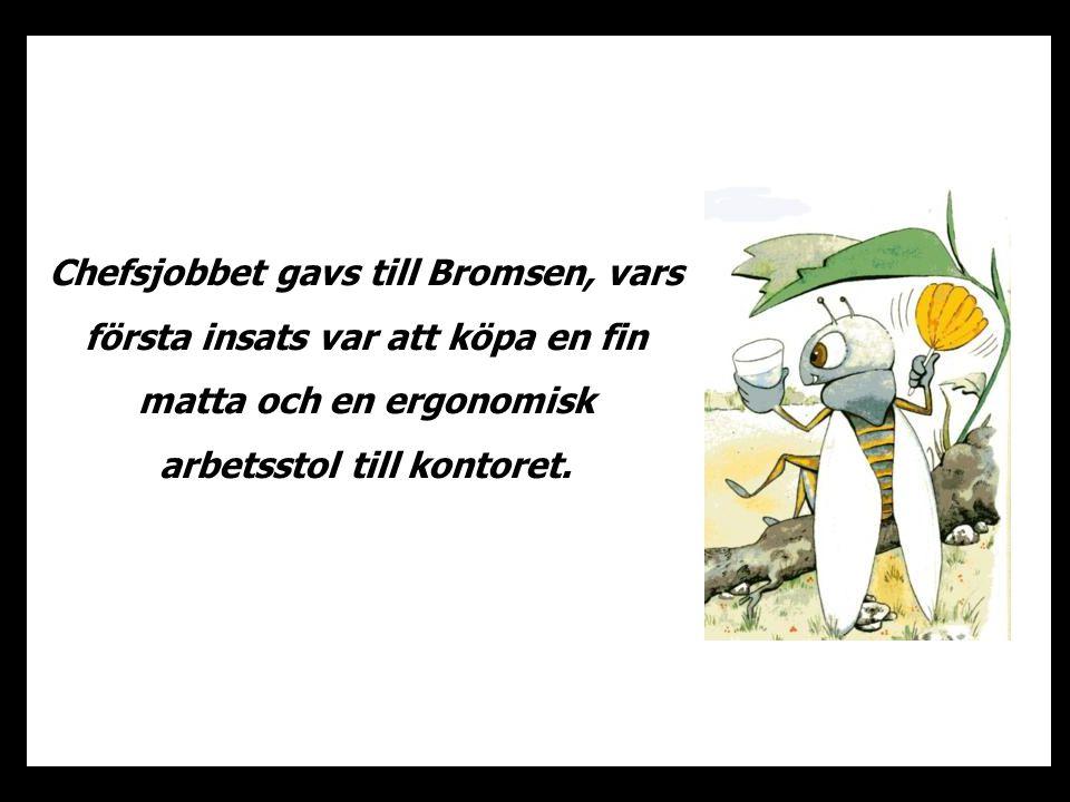 Chefsjobbet gavs till Bromsen, vars första insats var att köpa en fin matta och en ergonomisk arbetsstol till kontoret.