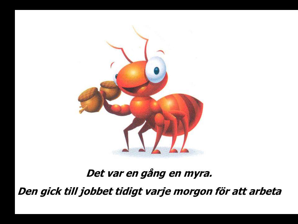 Det var en gång en myra. Den gick till jobbet tidigt varje morgon för att arbeta