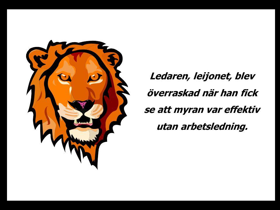 Ledaren, leijonet, blev överraskad när han fick se att myran var effektiv utan arbetsledning.