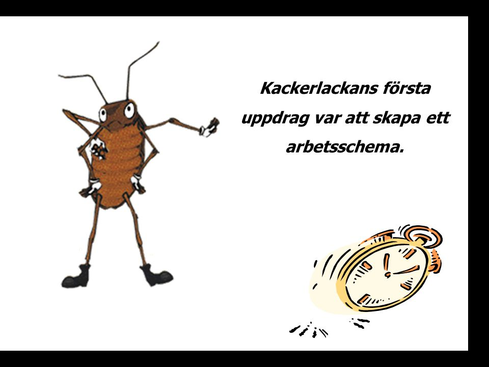 Kackerlackans första uppdrag var att skapa ett arbetsschema.