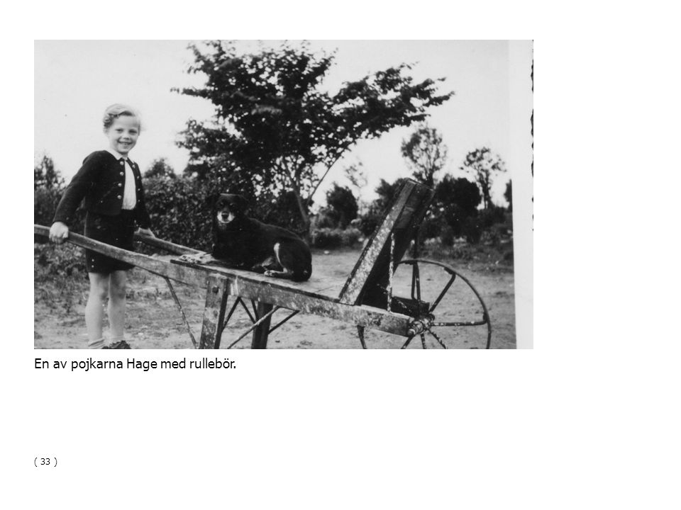 En av pojkarna Hage med rullebör. ( 33 )