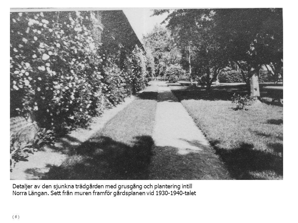 Detaljer av den sjunkna trädgården med grusgång och plantering intill Norra Längan. Sett från muren framför gårdsplanen vid 1930-1940-talet ( 6 )